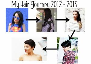 Hair-2BJourney